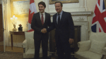David Cameron welcomes Justin Trudeau to Downing Street